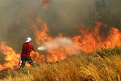 Θλιβερή πρωτιά για την Κεφαλονιά στις πυρκαγιές